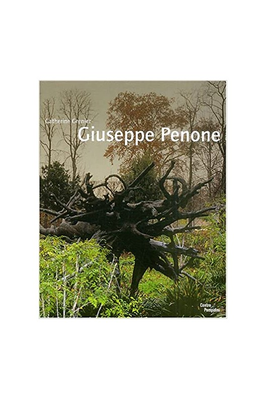 Giuseppe Penone / Pompidou 2004