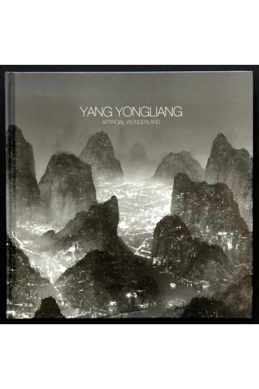 Artificial wonderland / YangYongliang