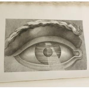Claude-Nicolas Ledoux /L'Architecture considérée sous le rapport de l'art, des moeurs et de la législation.